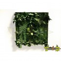 TABLEAU VEGETAL STABILISE MATIGREEN 60 X 60