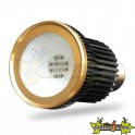 Ampoule LED Spectra Bulb 15 W Bloom