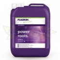 PLAGRON ROOTS 5000ML
