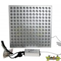 INDOOR LED - PANEL GROW LIGHT 45W 276X276X14MM , croissance et floraison